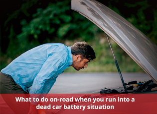 What to do on-road when you run into a dead car ba
